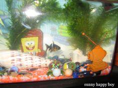 sunny happy boy: My new pet fish http://sunnyhappyboy.blogspot.co.uk/2013/11/my-new-pet-fish.html