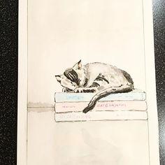 Sleeping cat. #catlovers #catillustration #illustrationoftheday #illustration #colorlove #coloraddict #watercolour #artlovers #watercoloursketch #watercolorillustration #waterblog