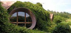 Maison organique bulles