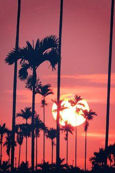 #Sunset perfection