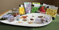 5 tips para conseguir semillas sin quebrar nuestro bolsillo