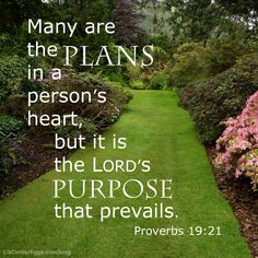 """#19 """"Purpose tells us this is not a whim, not a passing notion. God isn't capricious. Everything He does is according to His will."""" http://www.lizcurtishiggs.com/2014/09/your-50-favorite-proverbs-19-best-laid-plans/"""