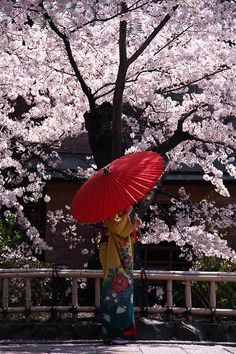 Lady in kimono at Heian-jingu shrine, Kyoto, Japan: photo by 92san 平安神宮 京都