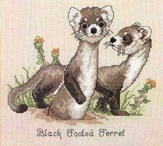 Baby Animal Cross Stitch Patterns