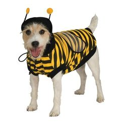 Bumble Bee Pet Costume, X-Large - http://www.thepuppy.org/bumble-bee-pet-costume-x-large/