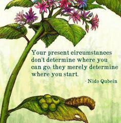 plant good seeds...