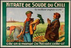 Nitrate de soude du Chili, le meilleur engrais azoté:elle en a mangé du nitrate, celle ci! (Commercial & advertising posters) #Booktower