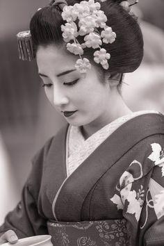 Japanese Geisha, Japanese Beauty, Japanese Lady, Japanese Kimono, Geisha Tattoo Design, Japonese Girl, Geisha Art, Memoirs Of A Geisha, Art Asiatique