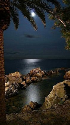 romantic and charming nature photographs! Beautiful Moon, Beautiful World, Beautiful Places, Beautiful Pictures, Moon Pictures, Nature Pictures, Shoot The Moon, Amazing Nature, Night Skies