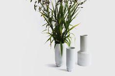 Vases In-Situ matthieus