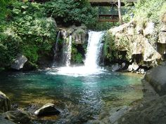 michoacan mexico Uruapan where German lives. He swam in these waterfall pools that are in several places in Uruapan, his whole childhood.