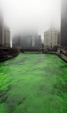 Dyeing the river green for St. Patricks day in Chicago!