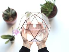 With spring quickly approaching, it's the perfect time to add a terrarium to your home. Istanbul-based Etsy shop Waen crafts geometric glassware that Glass Terrarium Containers, Succulent Terrarium, Succulent Plants, Cacti, Succulents, Vases, Glass Centerpieces, Glass Vase, Glass Planter