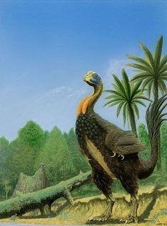 Gigantoraptor (dinosaurio terópodo del Cretácico, 80M)