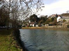 Christine Heard - Batson Creek taken 29 March