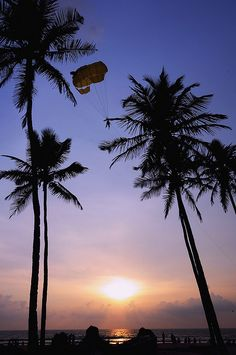 Parachuter descends upon Colva Beach in Goa just before sunset. Travel India.