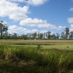 3 Creeks Campground 755 Kungala Rd, Kungala NSW 2460, Australia Campsite, Country Roads, Australia, Explore, Camping, Exploring