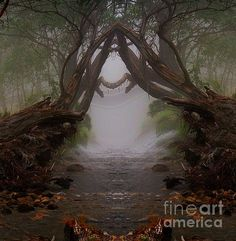 An Enchanted Place by Blair Stuart