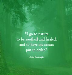 """""""i go to nature to be soothed and healed, and to have my senses put in order"""" ~ john burroughs -- #quotes"""