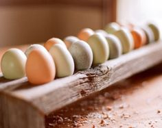 This Downton Abbey inspired egg holder is perfect for displaying your farm fresh eggs! Choose from three different types of wood. These egg holders will add a touch of country to any kitchen counter. They are sure to be a conversation starter!  Every item is hand made to order and will vary slightly in appearance. Medium: $59.00 H: approx 3 W: approx 5 L: approx 13.5 Holds 12 eggs   Please contact the seller with any additional questions or requests!  *These items are completely hand made…