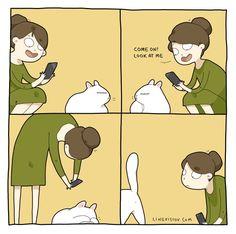 "Lingvistov on Twitter: ""My cat hates it when I'm trying to take a photo of him! - https://t.co/VTIgxIzxAM https://t.co/ybbneDlVpQ"""