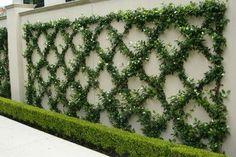 Private Residence 3 - traditional - landscape - dallas - Britton & Associates