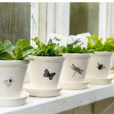 Plant pots plain and simple