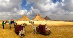 day tour pyramids cairo http://egypttravel.cc/en/tour/list/127/1Private day trip to the Great Pyramids and Sphinx, Sakkara and Memphis from ... Photo of Cairo Private Tour: Giza Pyramids, Sphinx, Memphis, Sakkara Giza.