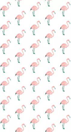 Pink bird wallpaper flamingos we heart it wallpaper pink hot pink bird wallpaper . Flamingo Wallpaper, Bird Wallpaper, Animal Wallpaper, Pattern Wallpaper, Iphone Wallpaper, Cute Wallpaper Backgrounds, Tumblr Wallpaper, Phone Backgrounds, Cute Wallpapers