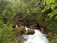 Szlovéniai hosszú hétvége - a legszebb látnivalók Bledben és környékén - Kezdj élni! Slovenia, Waterfall, Travelling, Bucket, Outdoor, Outdoors, Outdoor Living, Garden, Aquarius