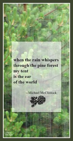 Tanka poem: when the rain whispers -- by Michael McClintock.
