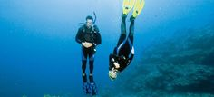 # Diving & The Body Systems.  http: // ow.ly/UigaQ