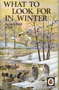 WHAT TO LOOK FOR IN WINTER a Vintage Ladybird Book Nature Series 536 Matt Hardback 1975