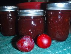 Plum Jam - sounds simple enough to try a small batch...