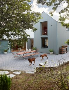 This modern barn on Jacobsdal wine farm in Stellenbosch is home to Koba and Cornelis Dumas and their two young sons.