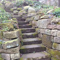 Where will this path take me??  At Stan Hywet Hall & Garden, Akron, OH.