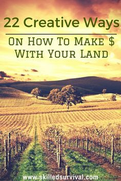 22 Creative Ways On How To Make Money With Land #bugoutbag #prepper #shtf