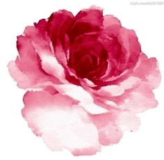 I wanna get a watercolor rose done on me.