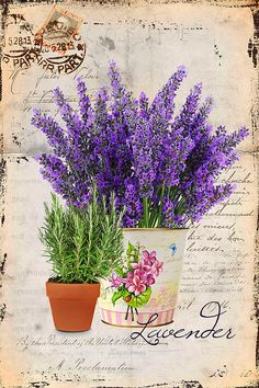 Details about Vintage Image Shabby Labels Lavender Flowers Grunge Waterslide Dec. Decoupage Art, Decoupage Vintage, Vintage Paper, Vintage Cards, Vintage Postcards, Vintage Images, Etiquette Vintage, Lavender Flowers, Lavander