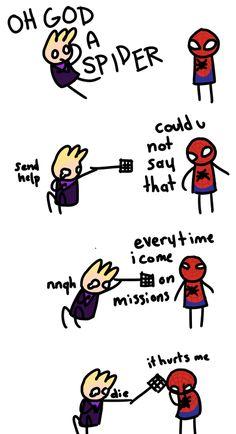 Ummm, wouldn't a Hawk eat a Spider?