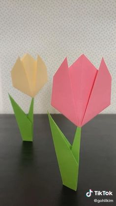 Origami 2d, Tulip Origami, Gato Origami, Origami Sheets, Origami Cards, Origami Videos, Kids Origami, Origami Butterfly, Paper Crafts Origami