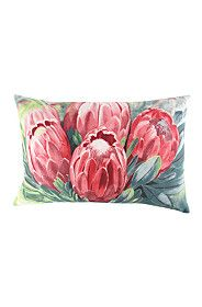 PRINTED PROTEA 40X60CM SCATTER CUSHION