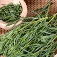How to Grow Tarragon - Tarragon, known as the 'king of herbs', is a hardy perennial herb grown for its warmly aromatic leaves, which are used to flavour, chicken, fish and egg dishes, salad dressings, vinegar and mustard. The leaves are also an essential ingredient in fines herbes. Tarragon is easy to grow and needs little attention once it is established.