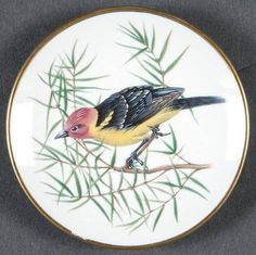 Franklin Mint Songbirds of The World Western Tanager - Boxed Plate Design, Bird Design, Franklin Mint, Vintage Plates, Mythological Creatures, Zebras, Beautiful Birds, Animal Drawings, Westerns