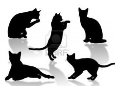 Black cat silhouette in different poses and attitudes Stock Photo - 2148229