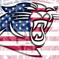 Nfl Flag, Nfl Football Teams, Football Art, Panther Football, Sports Teams, Cam Newton Panthers, Panthers Team, Carolina Panthers Football, Carolina Panthers Wallpaper