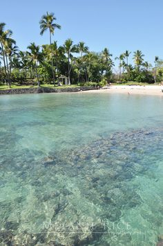 Kona, Hawaii...i had so much fun riding scooters here and doing other activities. its got alot of dry areas but kona is better than maui if your not looking for sandy beaches.