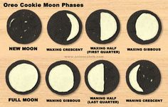 I've always been a fan of science activities that you can eat. One of my favorites that I have been using for years is the Oreo Cookie Moon Phases activity. It's almost as if Oreo cookies were made for this lesson, and it's a great way to see how well students can match a moon phase name with a moon phase appearance.    http://www.sciencebob.com/blog/?p=828