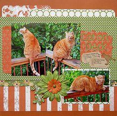 Cat on Deck by Celeste B.