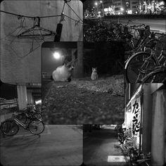 港。  愛知県、名古屋市、港区。